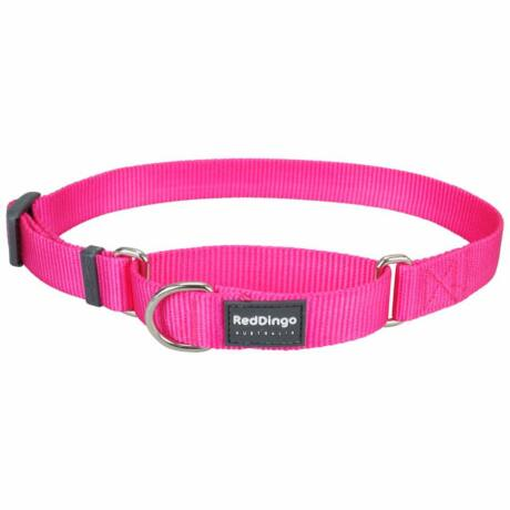 Red Dingo Hot Pink Small Martingale nyakörv