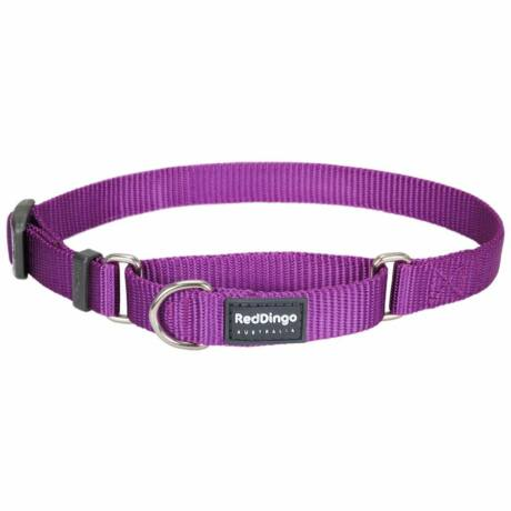 Red Dingo Purple Small Martingale nyakörv
