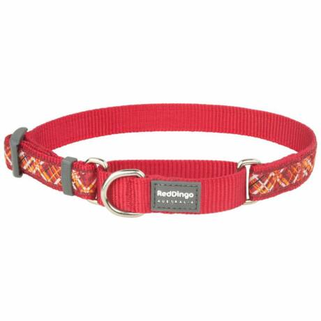 Red Dingo Flanno Red Small Martingale nyakörv