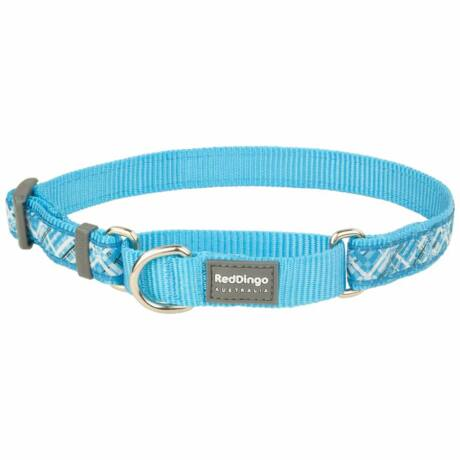 Red Dingo Flanno Turquoise Small Martingale nyakörv