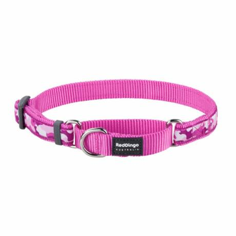 Red Dingo Camouflage Hot Pink Small Martingale nyakörv