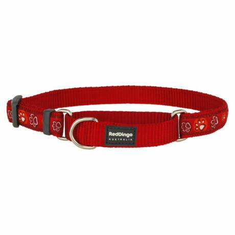 Red Dingo Paw Impressions Red Large Martingale nyakörv