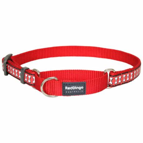 Red Dingo Reflective Red Medium Martingale nyakörv